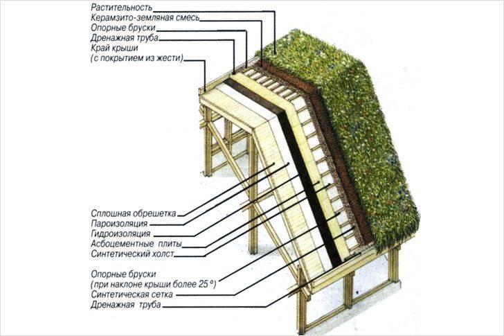 Озеленение крыш зданий частных домов: зеленая кровля своими руками
