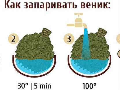 Как правильно запаривать веники для бани – правила для разных типов веток