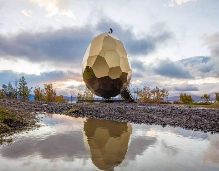 Чешская золотистая порода: красивые куры с необычным окрасом и высокими показателями яйценоскости