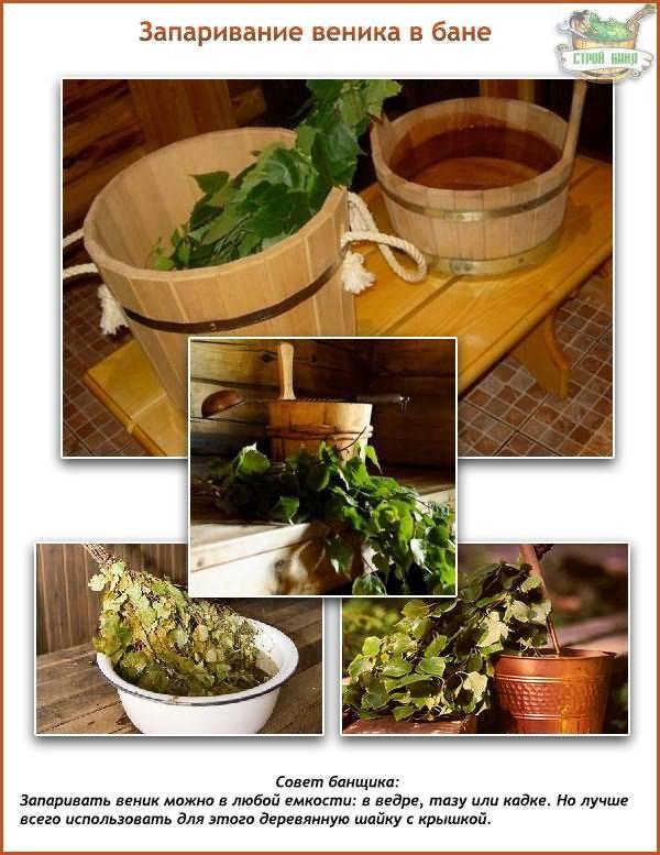 Пихтовый веник для бани: рекомендации по изготовлению и использованию