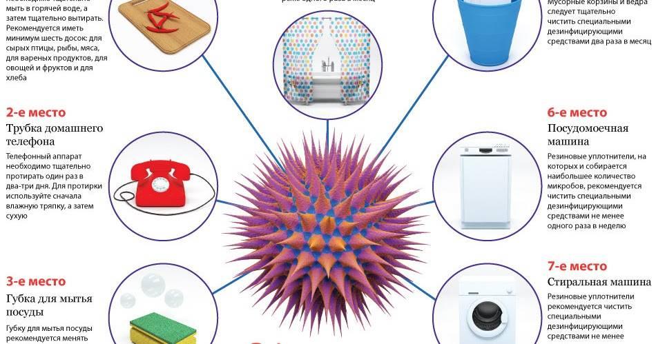 Вещи, имеющиеся в доме, которые нужно обязательно мыть или чистить хотя бы раз в неделю :: инфониак