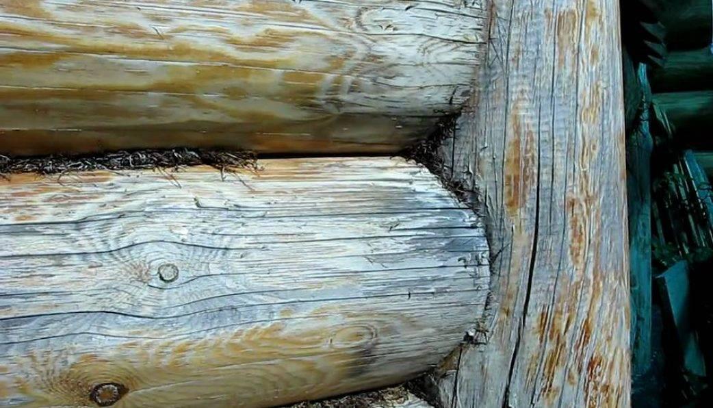 Средства для обработки деревянного сруба