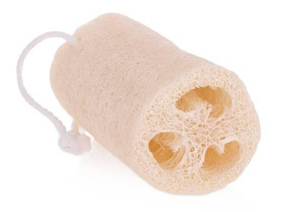 Как вырастить и сделать мочалку из семян люффа — траварт