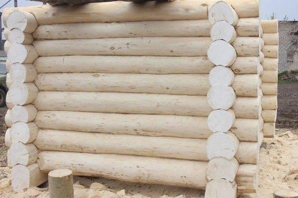 Из чего лучше строить баню из осины или сосны? | в чем разница