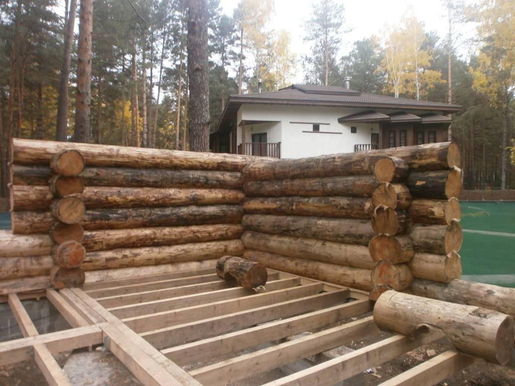 Баня из оцилиндрованного бревна своими руками — технические особенности и этапы строительства