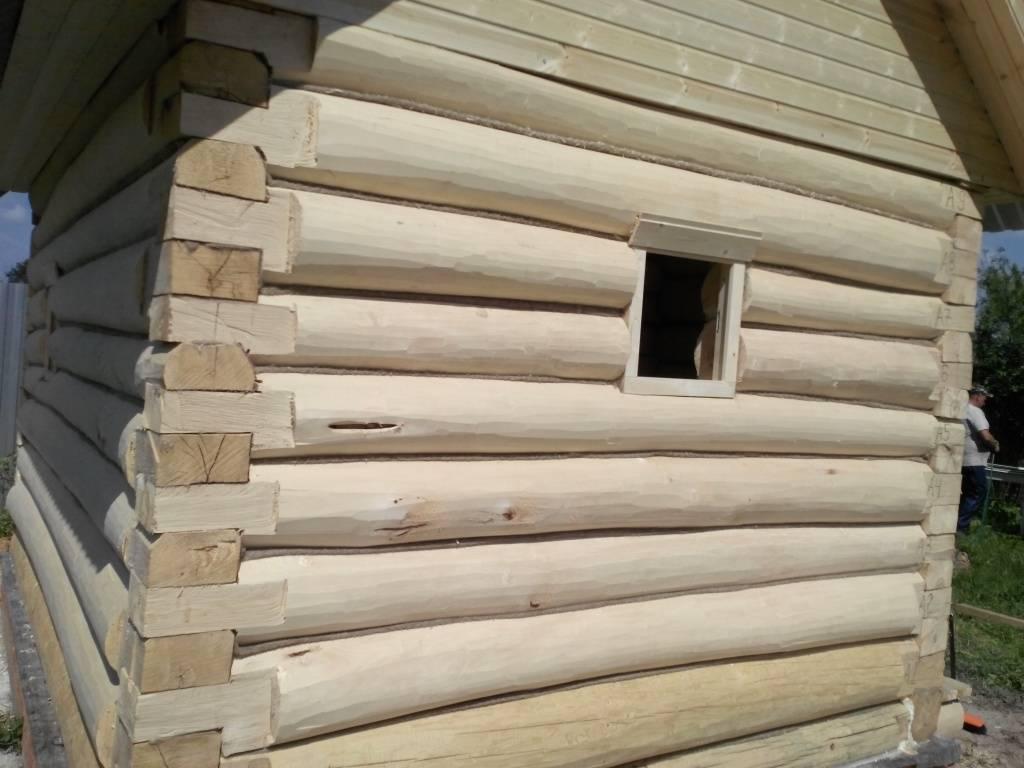 Баня из осины: плюсы и минусы при выборе в качестве основного материала для строительства