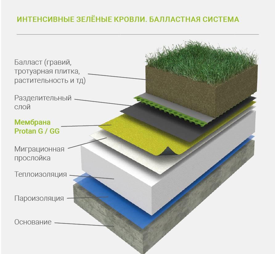 «зеленые» крыши: технология устройства травяной кровли