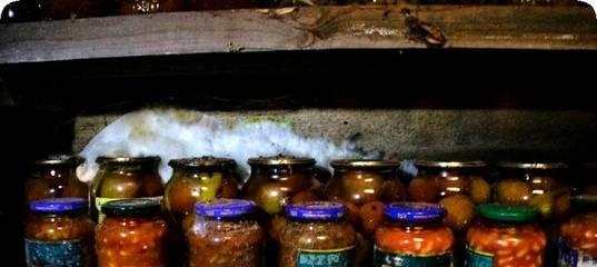 Чтобы крышки на консервации в погребе не ржавели — читать ответ