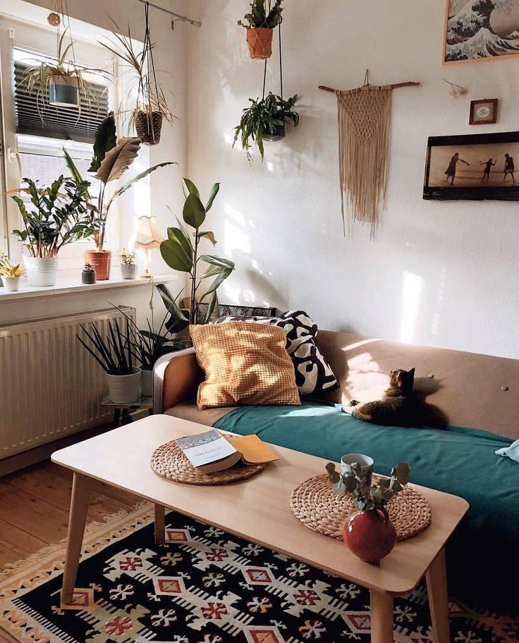 20 оригинальных идей, как украсить дом с помощью комнатных растений