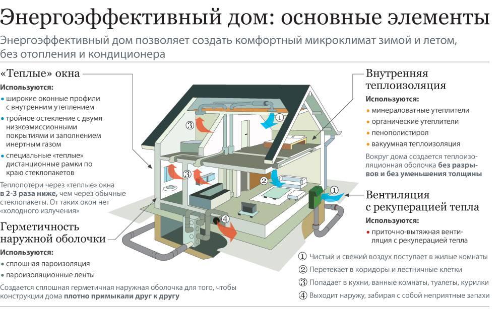 Как домашние питомцы влияют на энергетику квартиры?