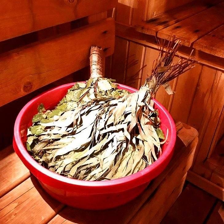 Эвкалиптовый веник для бани: как запаривать