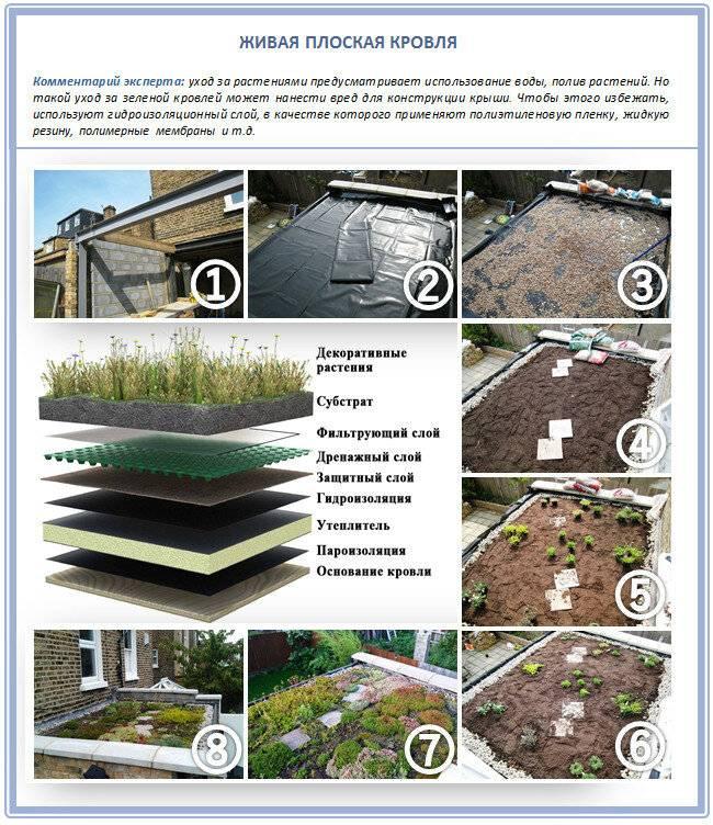 «зеленая» крыша (55 фото): технология устройства травяной кровли, озеленение отмостка дома, укладка травы на земляную крышку