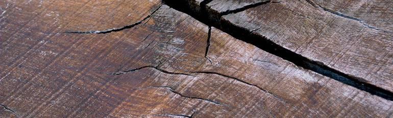 Ремонт трещин в дереве: лучшие варианты