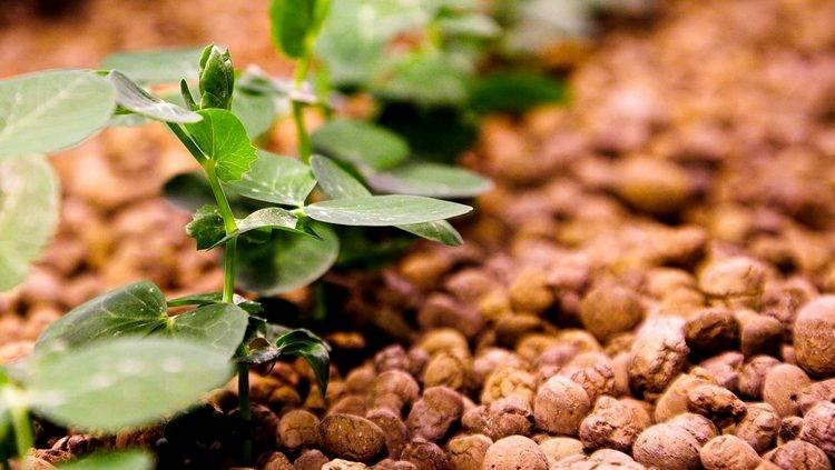 Утепление кровли керамзитом: экологично, надежно, безопасно