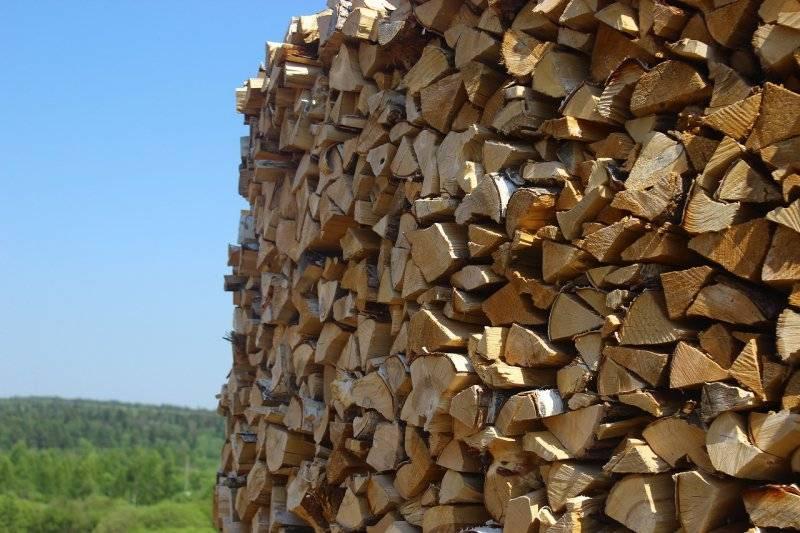 Теплотворная способность дров: сравнительная таблица разных пород