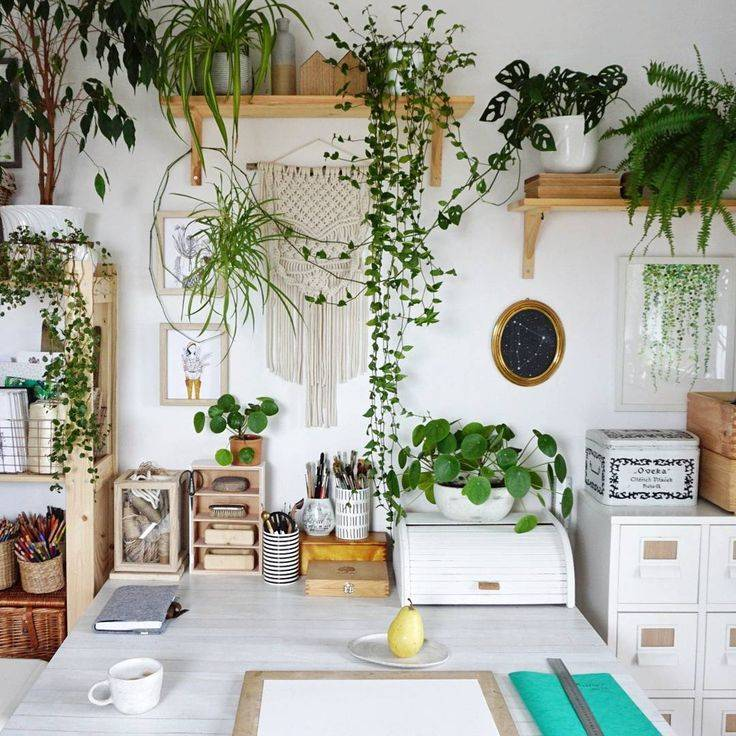 Цветы в интерьере гостиной: как создать кусочек природы у себя дома (50 фото)