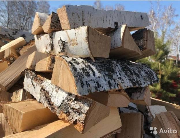 Энергетический лес быстрорастущей ивы для выращивания дров