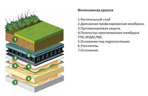 Зеленая кровля: 3 причины популярности высотных садов