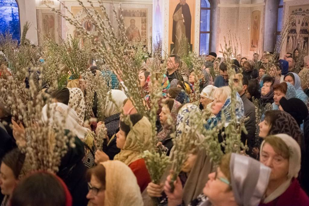 Как в вербное воскресенье освятить вербу