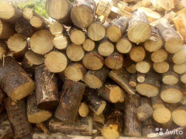 Осиновые дрова (13 фото): свойства дров из осины, плюсы и минусы. какие лучше для чистки дымохода - береза или осина? топка печи колотыми дровами