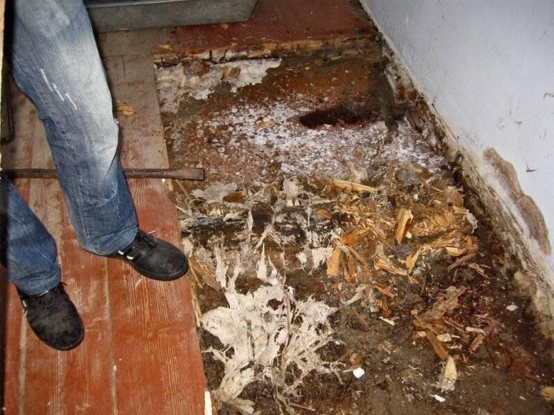 Скорая помощь против плесени на стенах, в ванной - инструкция, опыт