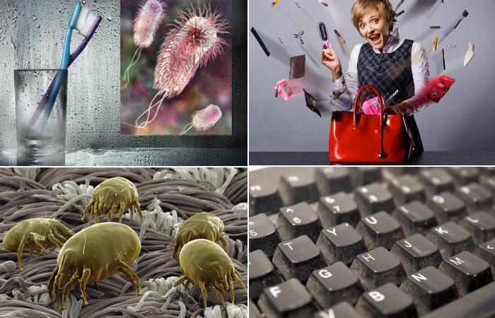 Топ-12 рассадников бактерий в вашем доме