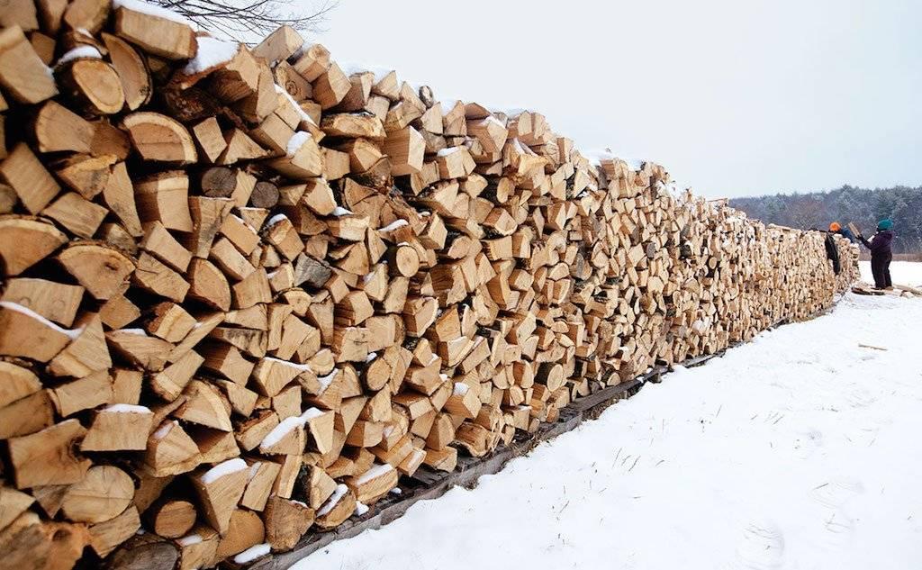 Как быстро высушить дрова - березовые и другие