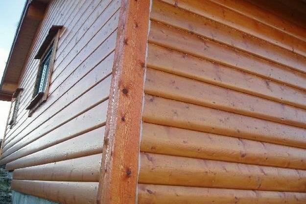 Обшивка бани евровагонкой, виды древесины, особенности монтажа