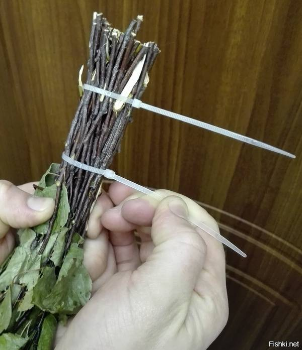 Заготовка веников для бани: сроки и правила