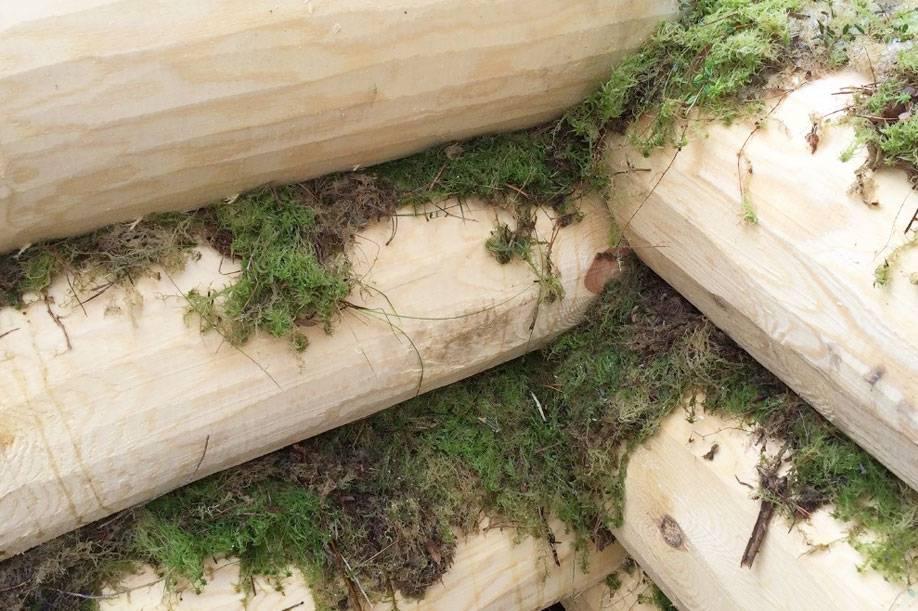 Как выбрать межвенцовый утеплитель для строительства деревянного дома из оцилиндрованного бревна?
