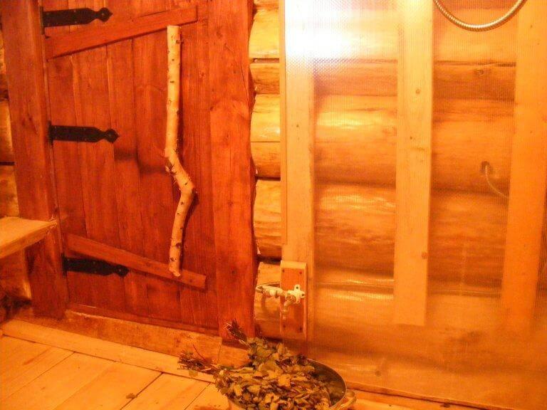 Осина для бани: плюсы и минусы сруба бани из осины, как построить своими руками баню из осинового бруса, фото и видео