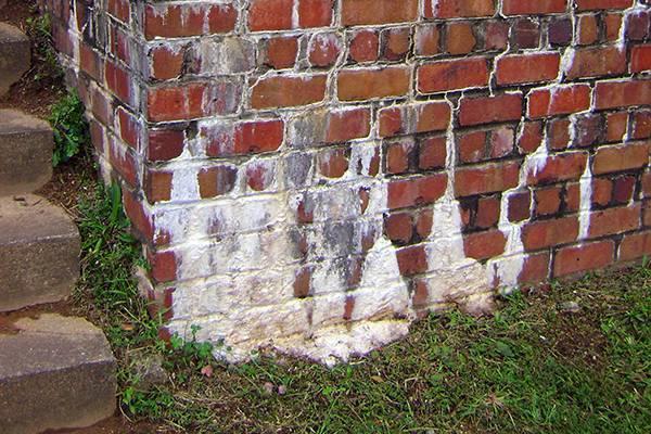 Высолы на кирпичных стенах