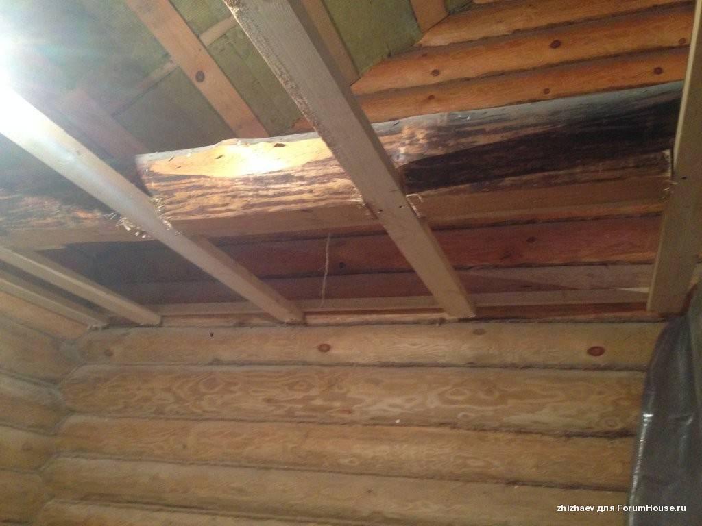Как сделать и утеплить потолок в бане своими руками?