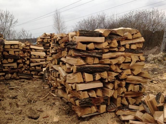 Какими дровами лучше топить печь в доме: можно ли топить печь еловыми дровами, осиной, черемухой, лучшие дрова для топки