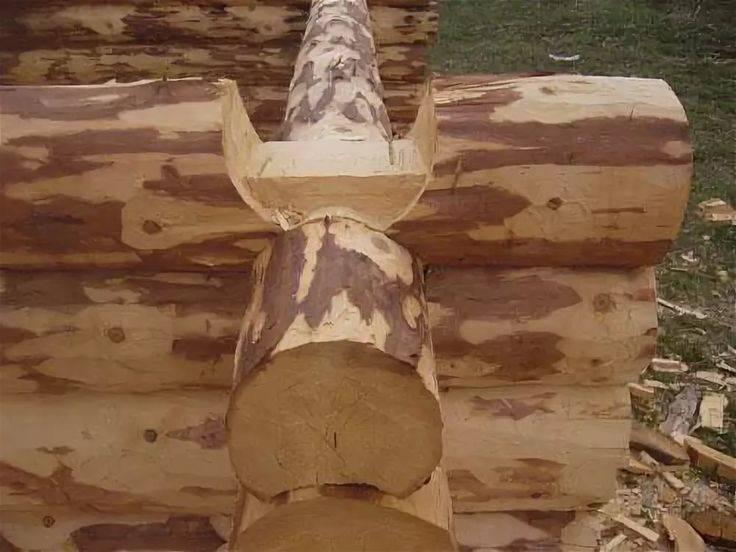 Баня из сруба своими руками: пошаговая инструкция - rmnt - медиаплатформа миртесен