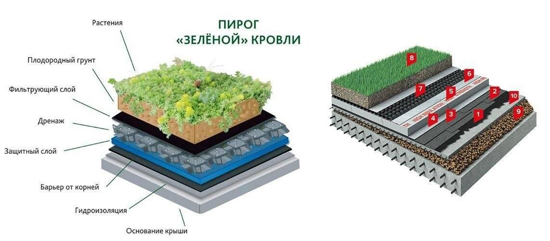 Современная зеленая крыша — варианты озеленения, виды и модное обустройство крыши (110 фото и видео)
