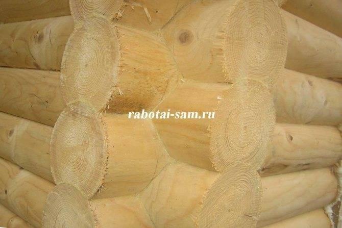 Выбор строительного материала для бани