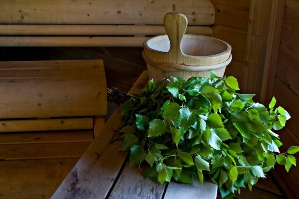 Дубовый веник и его польза. какая польза от веника в бане - новая медицина
