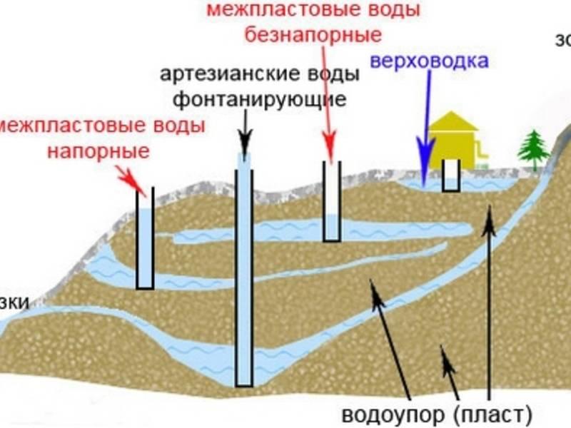 Как найти воду на участке для колодца своими руками