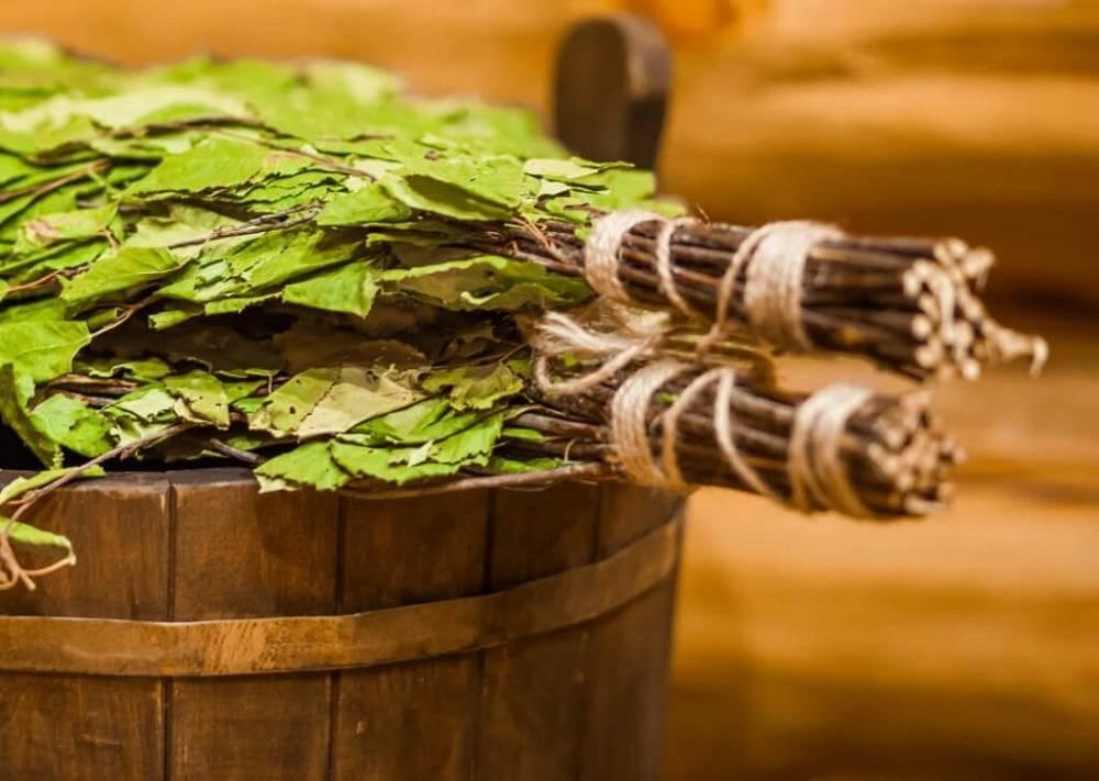 Березовый веник для бани: как сделать, когда заготовить, польза для здоровья