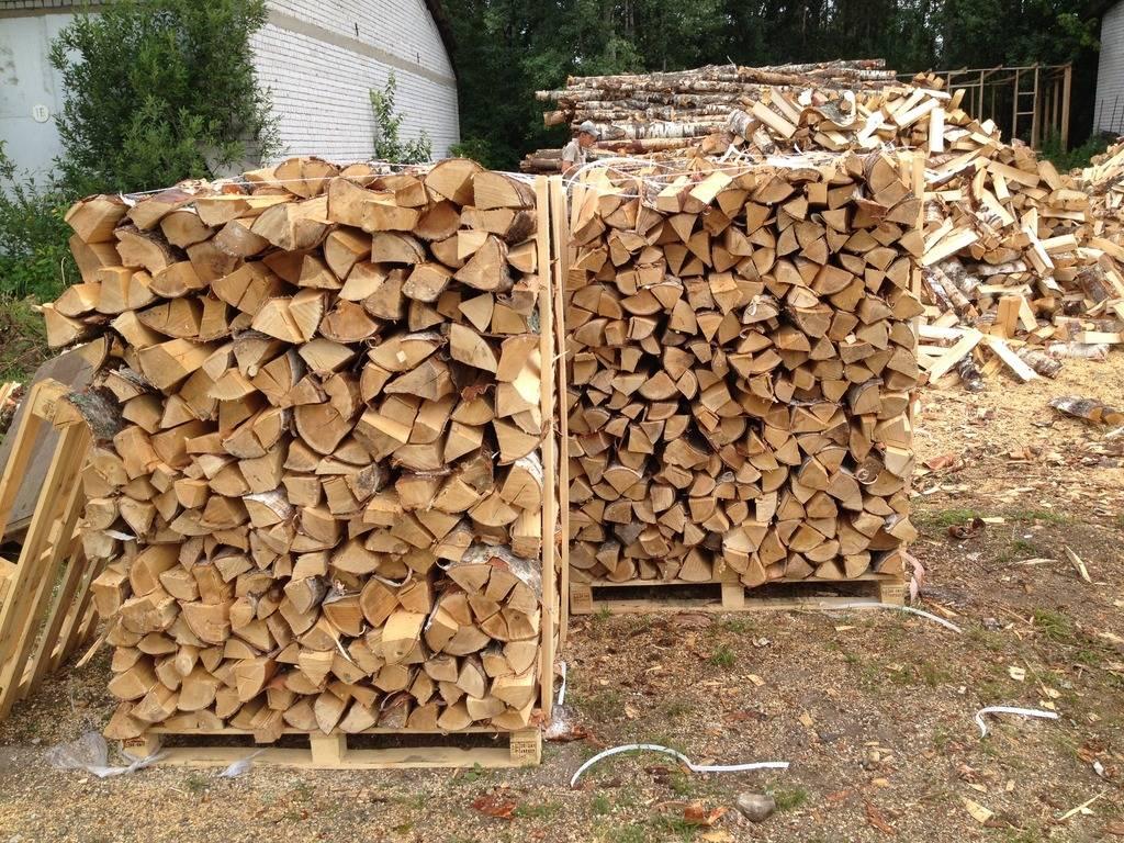 Сушка древесины: как высушить дерево на открытом воздухе, чтобы не трескалась и не повело