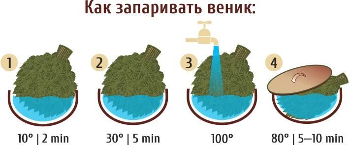 Как правильно запарить веник для бани: секреты и советы