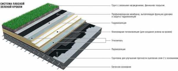 Технология высадки газона на крыше дома