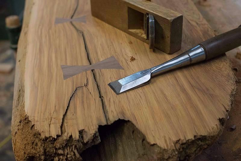 Разломы и трещины деревьев после зимы: причины и лечение | огородники