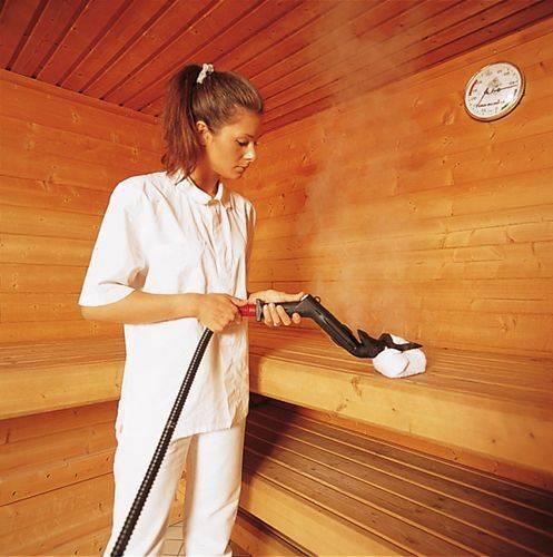 Очистка сажи в бане своими руками: эффективные способы борьбы с загрязнениями. чем обеззаразить баню — инструкция от специалиста чем мыть пол в бане для дезинфекции
