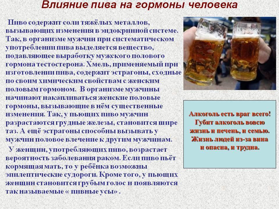 Можно ли пить пиво в бане: алкоголь, водку, последствия от этого