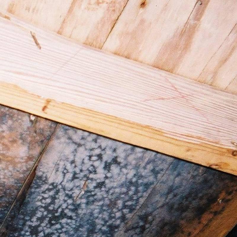 Как избавиться от плесени в бане — все способы