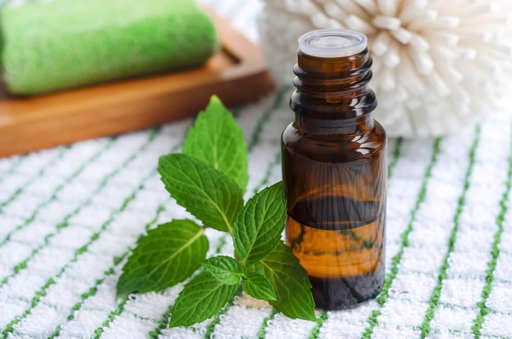 Эфирные масла для бани, их свойства и применение